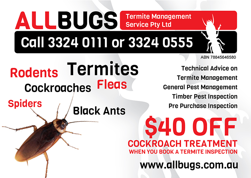 All Bugs Termite Mgt Services